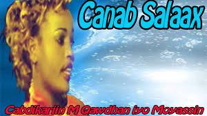 Canab saalax